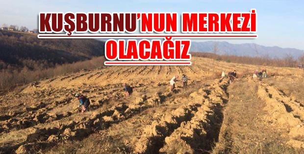ERBAA KUŞBURNU ÜRETİMİ İÇİN DEV YATIRIM-10936