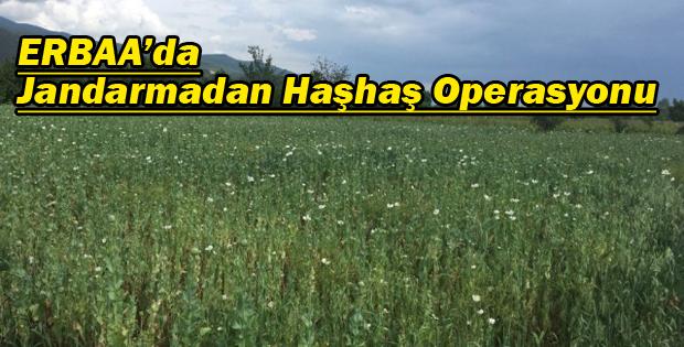 Erbaa'da HAŞHAŞ Operasyonu-11264