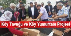 Köy Tavuğu ve Köy Yumurtası Projesi  Devam Ediyor