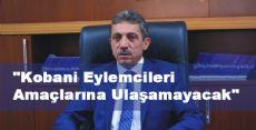 AK Parti'li Çelik: ''Kobani Eylemcileri Amaçlarına Ulaşamayacak''