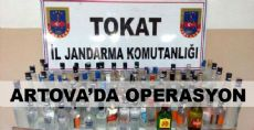 Artova'da Operasyon