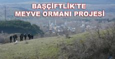 BAŞÇİFTLİK'TE MEYVE ORMANI PROJESİ