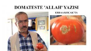 Domateste 'ALLAH' Yazısı