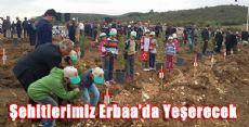 ERBAA 15 TEMMUZ ŞEHİTLERİ HATIRA ORMANI
