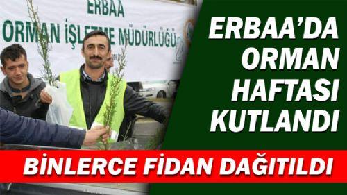 ERBAA'DA ORMAN HAFTASI KUTLANDI
