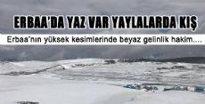 ERBAA'NIN YÜKSEK KESİMLERİ BEYAZA BÜRÜNDÜ