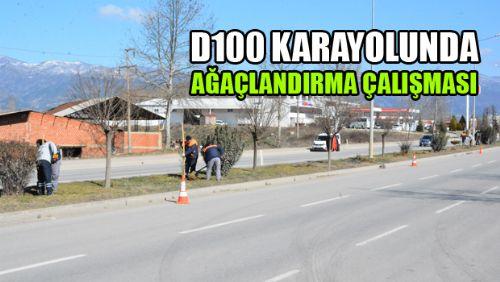 Erbaa Belediyesinden D-100 karayoluna fidan dikimi
