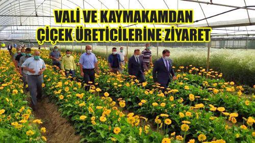 Erbaa Çiçek Üreticilerine Ziyaret