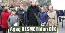 Erbaa'da Bin Fidan Dağıtıldı