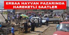 Erbaa'da Hayvan Pazarı