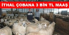 İTHAL ÇOBAN'A 3 BİN TL MAAŞ