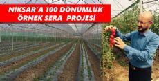 NİKSAR'A 100 DÖNÜMLÜK ÖRNEK SERA  PROJESİ