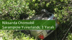 Niksarda Otomobil Şarampole Yuvarlandı, 1 Yaralı