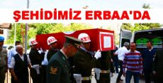 ŞEHİDİMİZ ERBAA'YA GELDİ