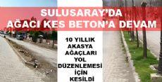 SULUSARAY'DA  AKASYA'LAR SAHİPSİZ KALDI