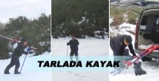 TARLADA KAYAK