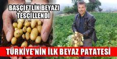 TÜRKİYE'NİN İLK BEYAZ PATATESİ