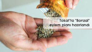 Tokat'ta ''Bonza'' eylem planı hazırlandı
