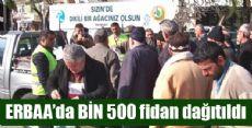Vatandaşa Bin 500 Fidan