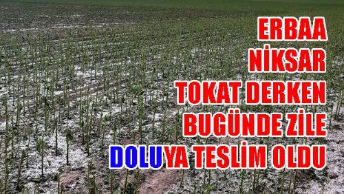 Zile'de Dolu Tarım Arazilerini Vurdu